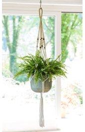 pflanzgef sse vasen wohnen wohnaccessoires dw shop. Black Bedroom Furniture Sets. Home Design Ideas